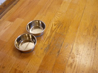 Dog Bowls Damaged Engineered Kitchen Wood Floor