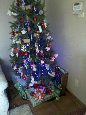 Christmas Tree <br> over <br> Floating White Oak Floor <br> With <br> Brazilian Cherry Border